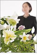 桐ケ谷斎場での一般葬儀スタンダードデラックスプラン